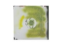 50_vert-brun2008.jpg